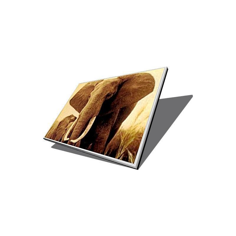 """المقحمة الكمبيوتر المحمول """"إتش بي جناح العاكس شاشات الكريستال السائل"""" 19.21066.034 V3000"""