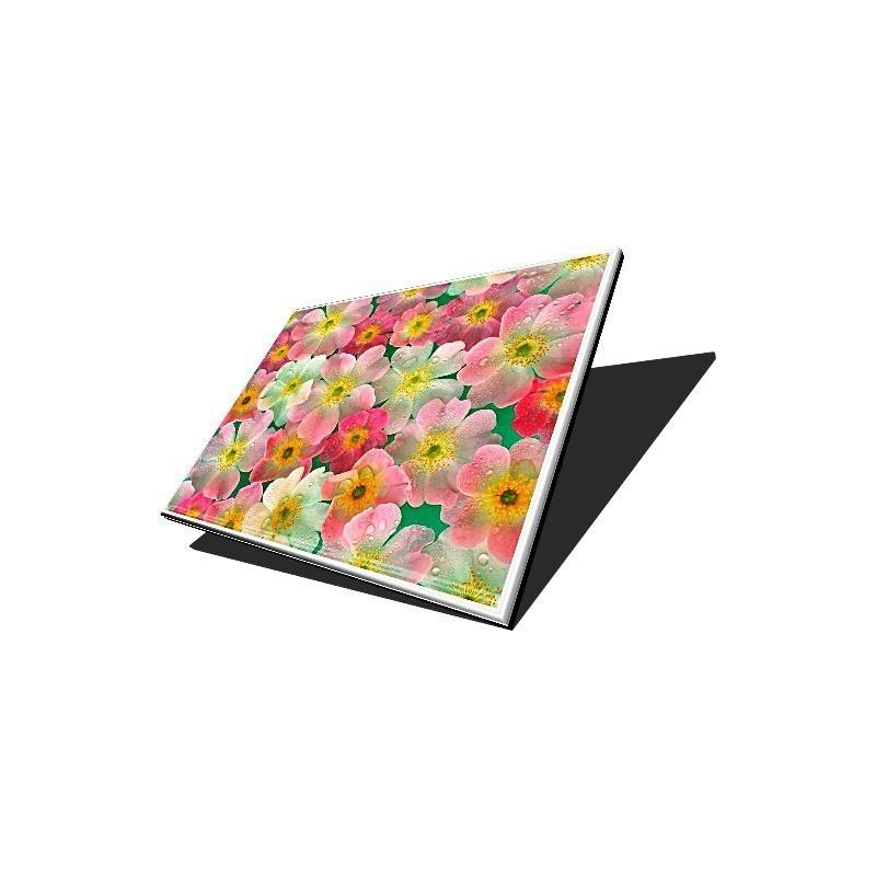 אינוורטר למחשב נייד אייסר Acer Aspire 5680 / 5715 Inverter YNV-C02 PK070018510 / PK070005U00
